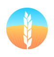 ears of wheat on round emblem with farm field vector image