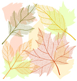 Autumn leaf set vector image vector image
