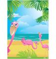 flamingos vector image