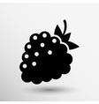 Raspberry logo template Abstract design concept vector image