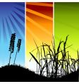 grass silhouette on meadow vector image vector image
