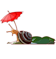 Cartoon snail under the umbrella vector image