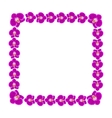 Beautiful orchid flowers frame vector image vector image