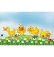 Four ducks playing in the park vector image