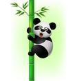 Panda Print vector image vector image