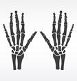 Human hands bones vector image