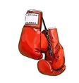 red boxing gloves vector image