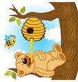 teddy bear eats honey bee vector image