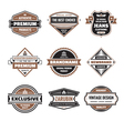 graphic badges collection vector image