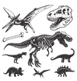 Set of dinosaurs elements vector image