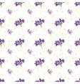 Seamless Lavender flowers background Botanical vector image