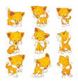 cute yellow cat actions vector image