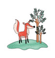 fox cartoon in forest next to the trees in colored vector image