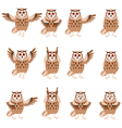 Set of flat owl icons vector image