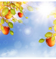 apple tree over blue sky vector image vector image