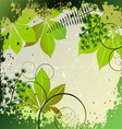 Grunge frame with plants elements vector image