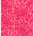 seamless background with pink dahlia vector image