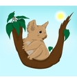 Cute Koala sitting on a tree vector image