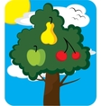 Orchard tree vector image