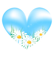 camomile in sky heart vector image vector image