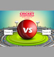 stadium of cricket with ball on pitch and vs vector image