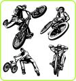 BMX rider vector image vector image
