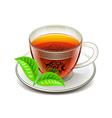 Ceylon tea isolated on white vector image