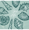 background with sea shells vector image vector image