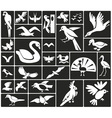 birds icons vector image