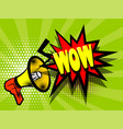comic book text advertising megaphone wow vector image