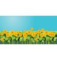 sunflowers 380 vector image