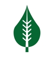leafs ecology symbol icon vector image