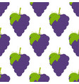 pattern with grapes vector image