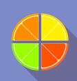 Flat graphic citrus fruits vector image