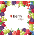 berries frame for your designs vector image