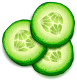 Fresh cucumber slice isolated on white background- vector image