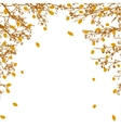 tree branches and orange leaves vector image vector image