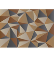 Brown Camouflage Polygon Background vector image