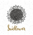 sunflower sketch with lettering vintage label vector image