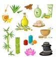 Spa Salon Decorative Elements Set vector image