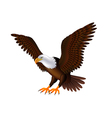 Flying eagle isolated on white vector image