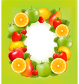 fresh fruit in frame green background vector image vector image