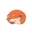 cute red fox sleeping woodland cartoon animal vector image