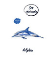 blue dolphin watercolor vector image