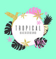 tropical exotic plants stylish background trendy vector image