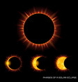phases of the total solar eclipse on dark vector image