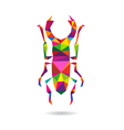 Beetle abstract isolated vector image
