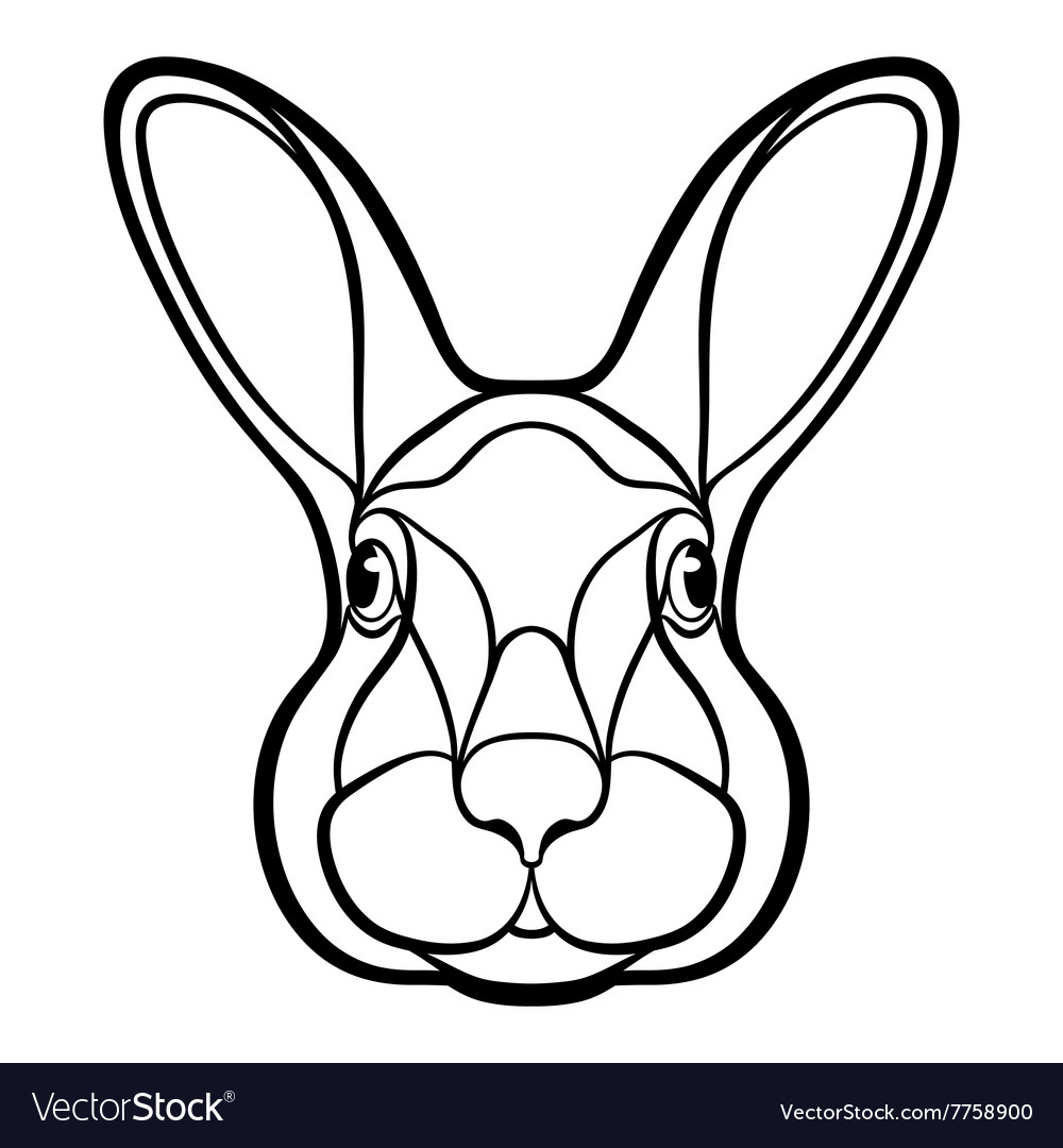 Head of a rabbit hare coloring vector