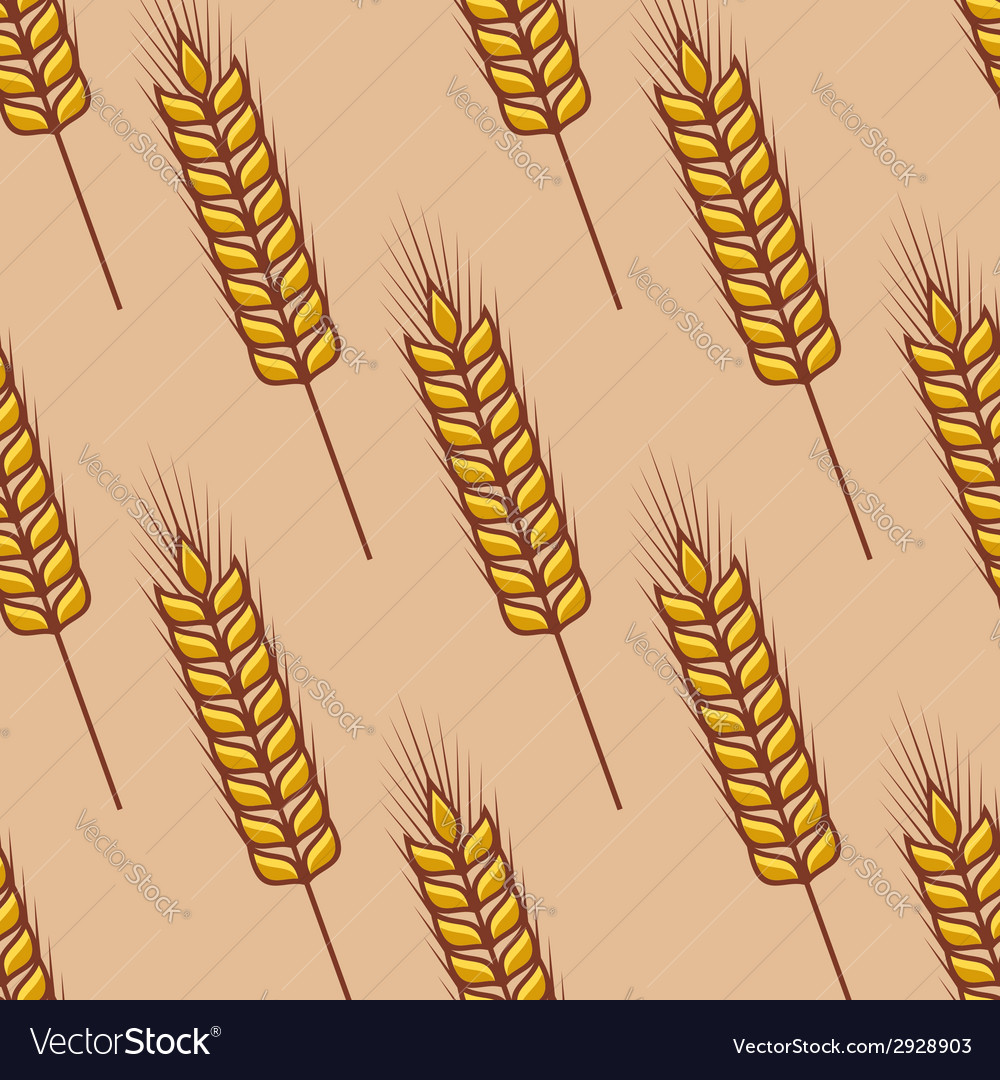 Seamless pattern of cereal ears vector