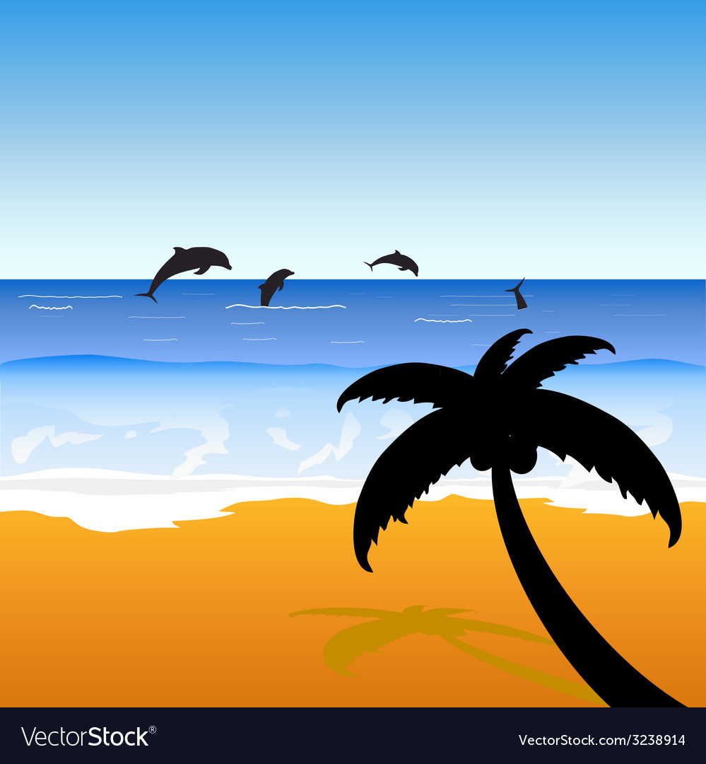 Palm on the beach with dolphins color vector